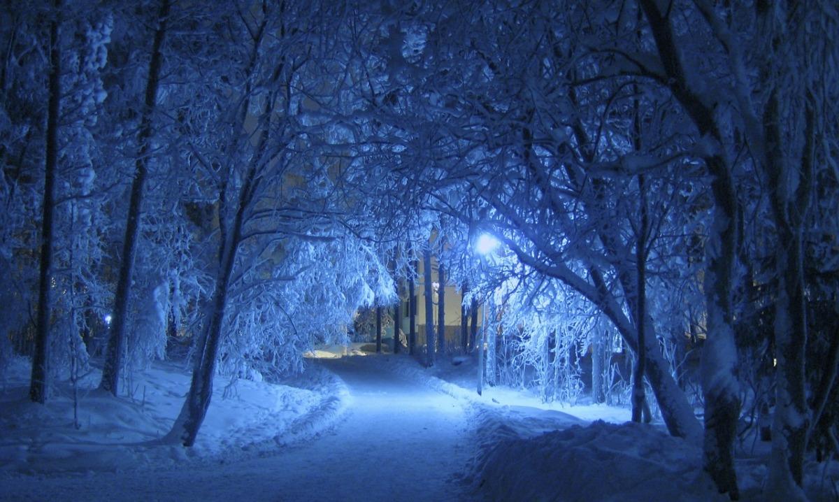 Winter, path, snow, night